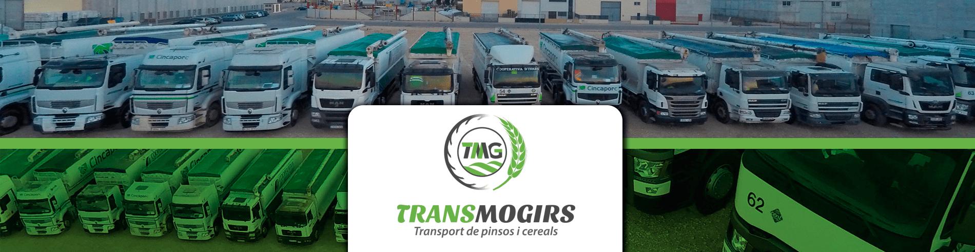 Transmogirs_banner