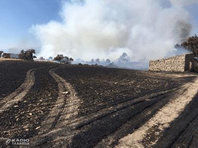 Els Bombers de la Generalitat treballen en un incendi agrícola i forestal a Ciutadilla ja estabilitzat