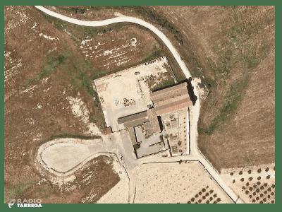 Aprovat un Pla especial urbanístic per a introduir el cultiu del pistatxo a l'Urgell