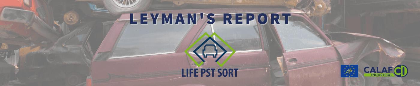 Leyman's Report
