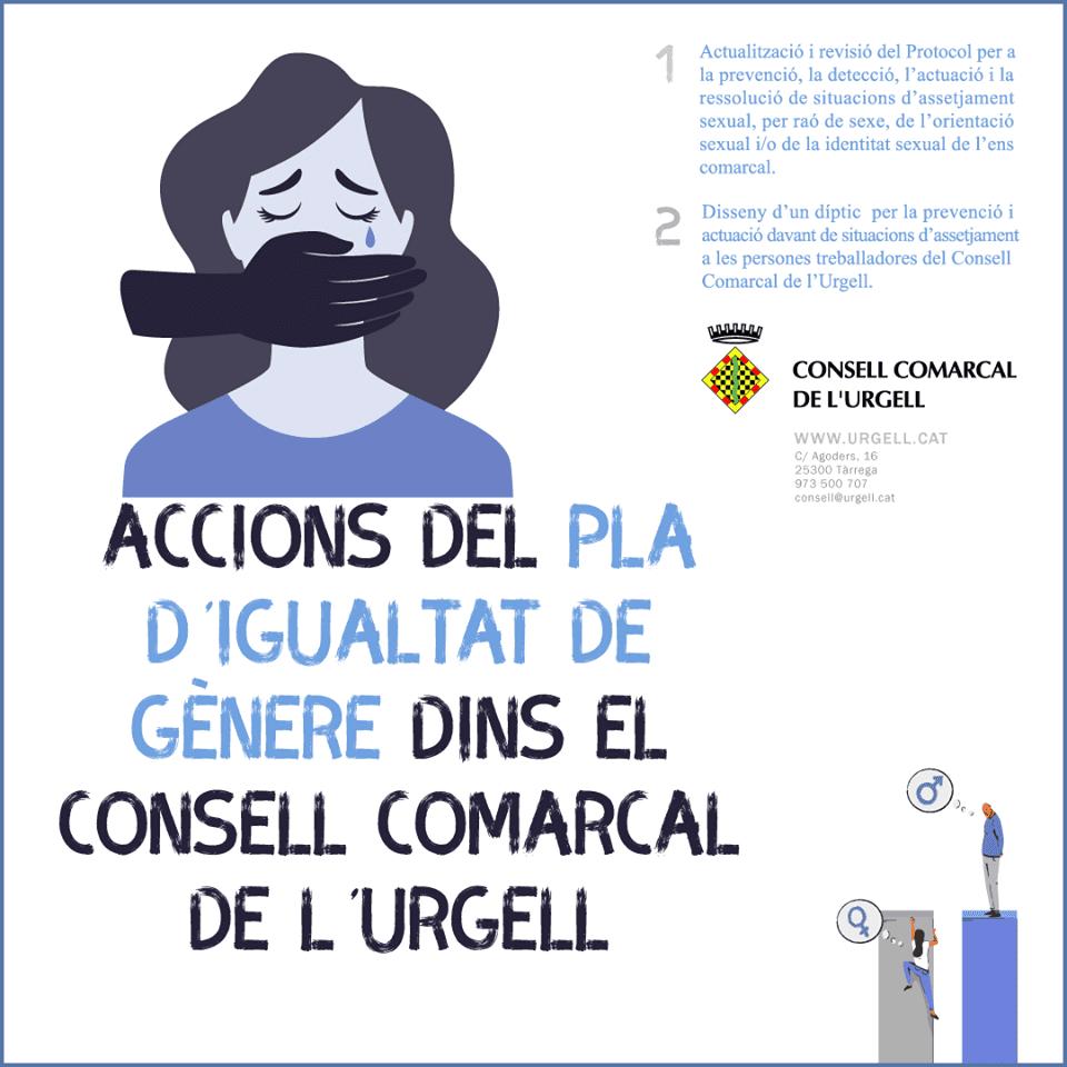 El Consell Comarcal de l'Urgell implementa accions del seu Pla d'Igualtat d'Oportunitats