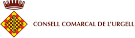 consell comarcal