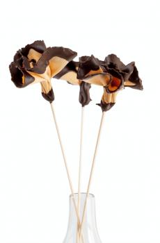 ROSA DE GALLETA Y CHOCOLATE - 4