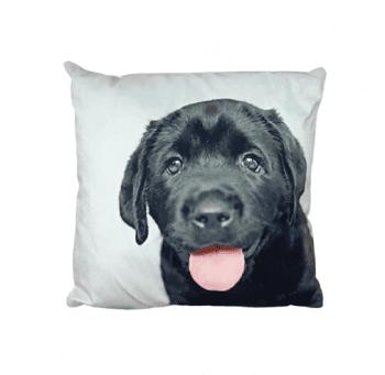 Cojines perro labrador negro 33 x 33