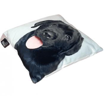 Cojines perro labrador negro 33 x 33 - 1