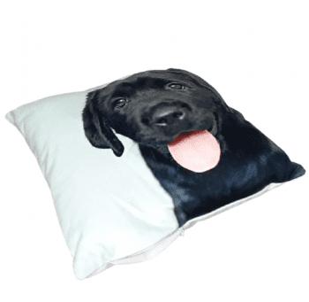 Cojines perro labrador negro 33 x 33 - 3