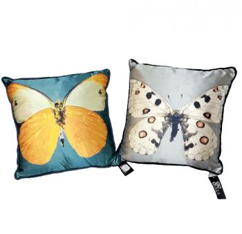 Cojín mariposas turquesa 28 x 28 - 3
