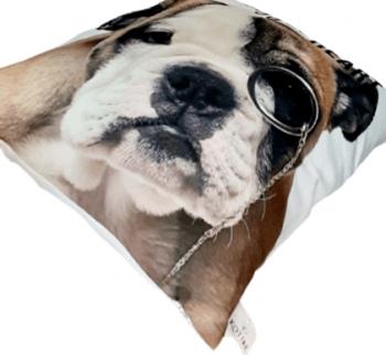 Cojín perro bulldog 45 x 45 - 1