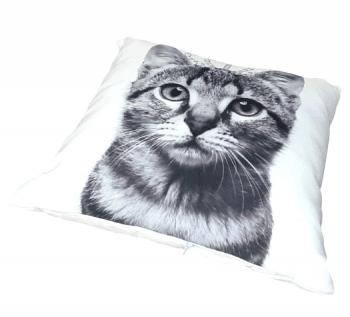 Cojines gato corona 40 x 40 - 1