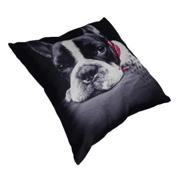 Cojines Bulldog fuxia - 1