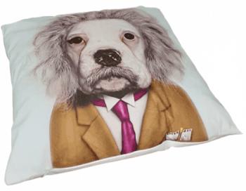 Cojines perro Einstein 45 x 45 - 2
