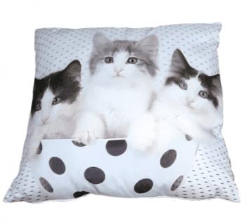 Cojines gatos lunares 45 x 45