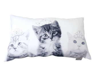 Cojines rectangulares gatitos 30 x 50