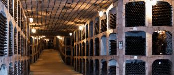 10 Curiosidades sobre el vino sorprendentes