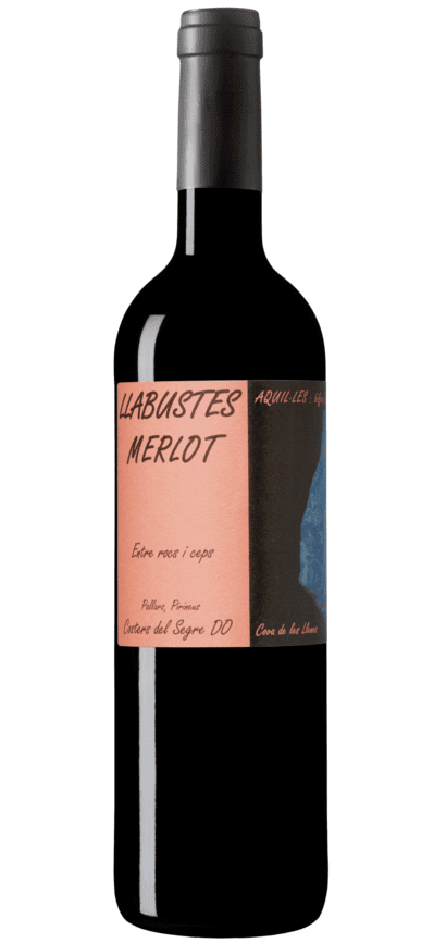 Llabustes Merlot Negre 75 cl