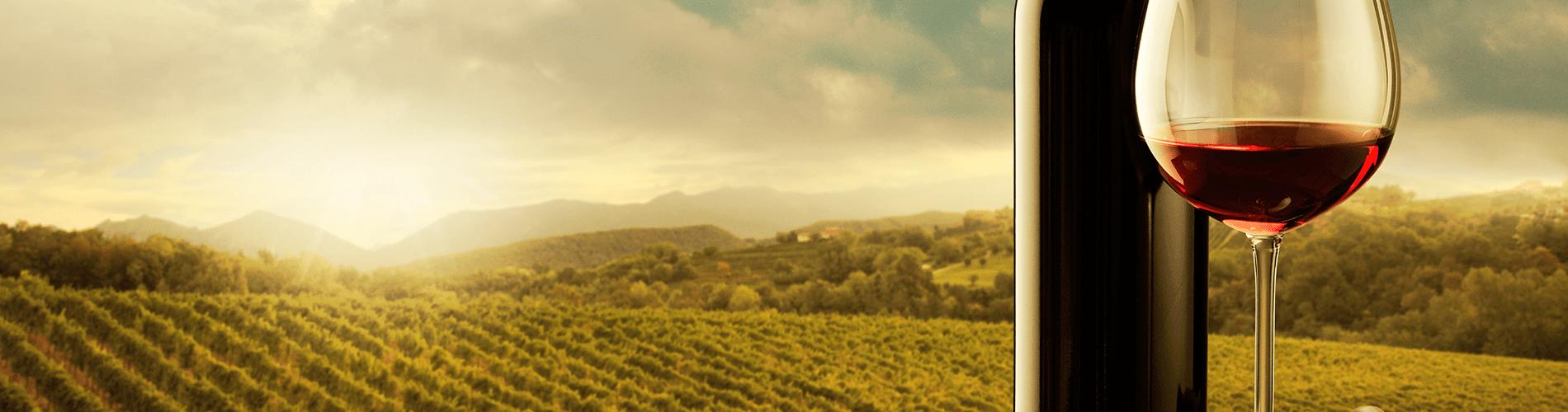 Slider el vino nace en la viña