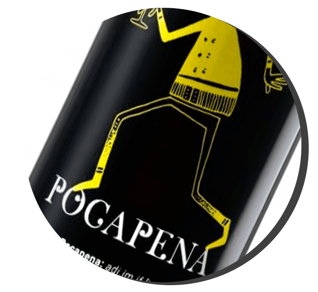 icon article blog pocapena