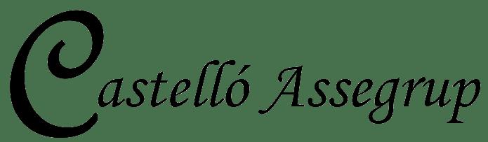 Castelló Assegrup SL