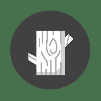 Lecho Corteza Reptiles