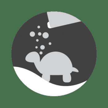 Alimentación Acuario Tortugas