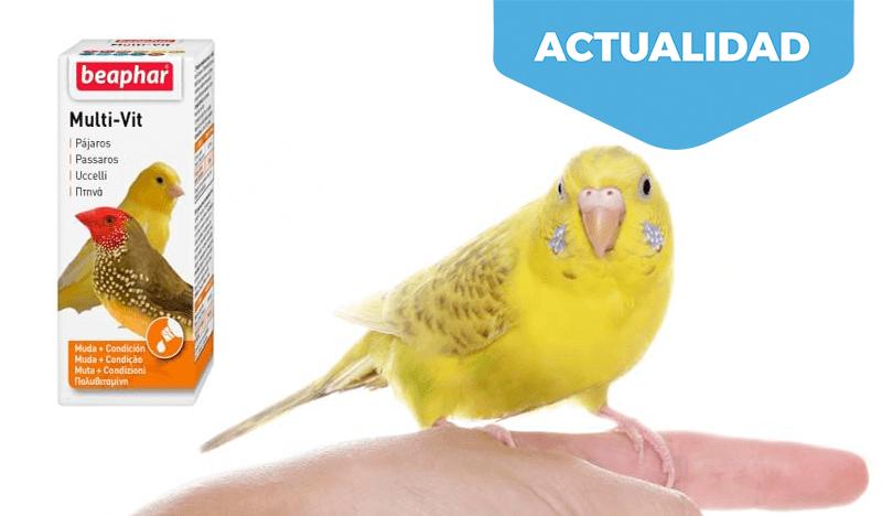 La muda del plumaje. Beaphar Multi-Vit es el gran aporte vitamínico para aves en este proceso mejorando su condición.