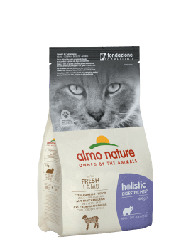 CAT DRY HOLISTIC INTESTINAL CORDERO