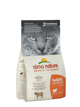 CAT DRY HOLISTIC ADULT VACUNO Y ARROZ