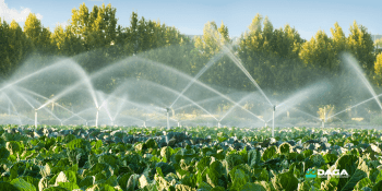 United Nations ultimatum to find the water-agriculture balance