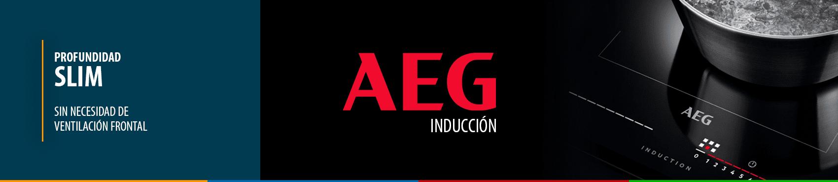 INDUCCIONES OFERTA AEG