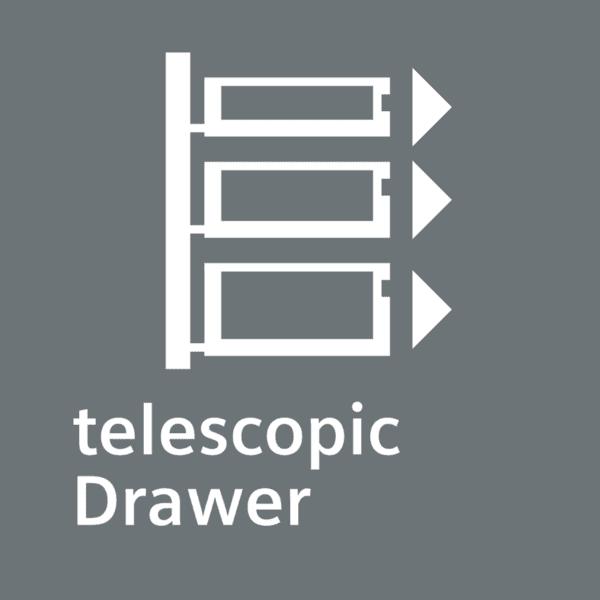 Raíles telescópicos