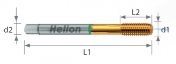 Macho roscar laminación HSS-E TiN D2174C