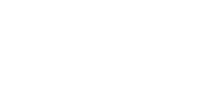 Dima Rifle Systems