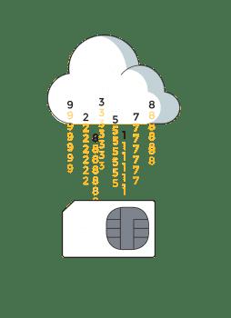 Renovación anual tarjeta en la nube