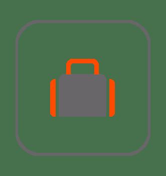 Transportines y bolsos erizos