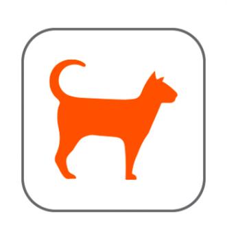 Productos en oferta gatos