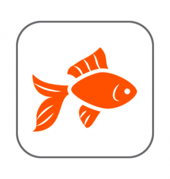 Productos en oferta peces