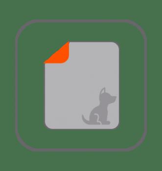 Educadores perros