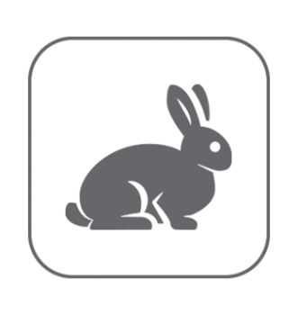 Higiene piel y pelaje roedores