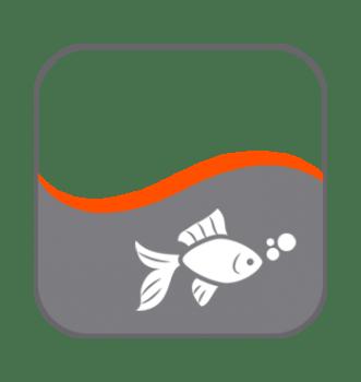 Alimentación peces estanque