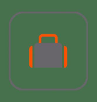 Transportines y bolsos hurones