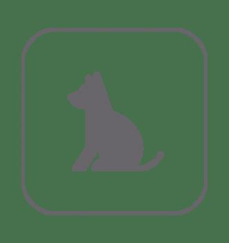 Decoración hogar perros