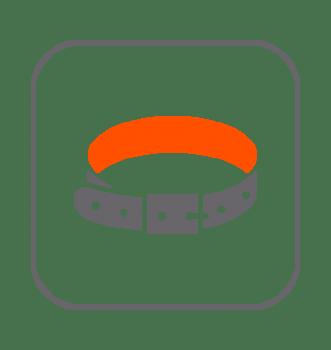 Complementos y Accesorios Hurones