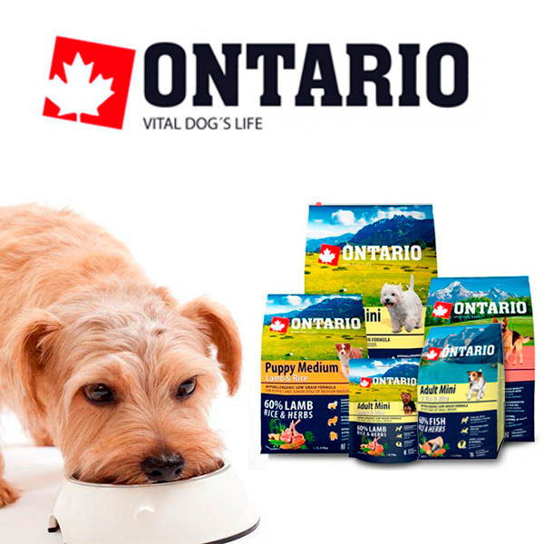 Pienso perros Ontario 15% dto