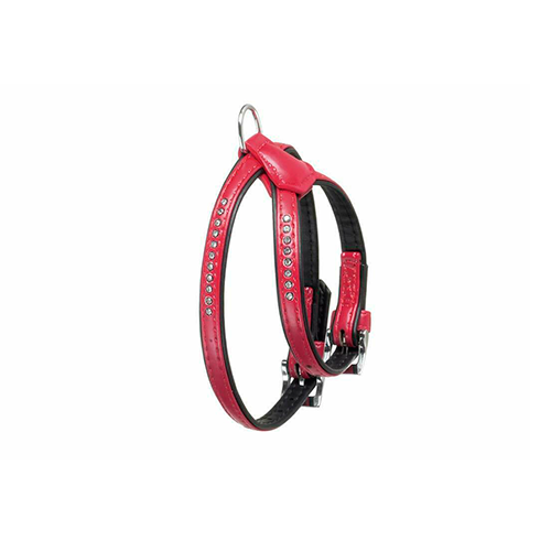 ARNES MONTE CARLO LEATHER PLUS ROJO