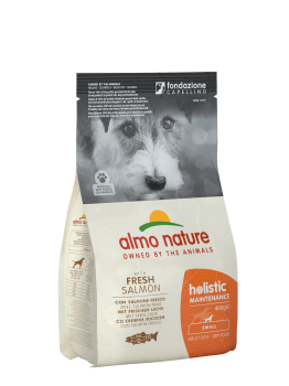 DOG DRY HOLIST ADULT SMALL SALMON Y ARROZ