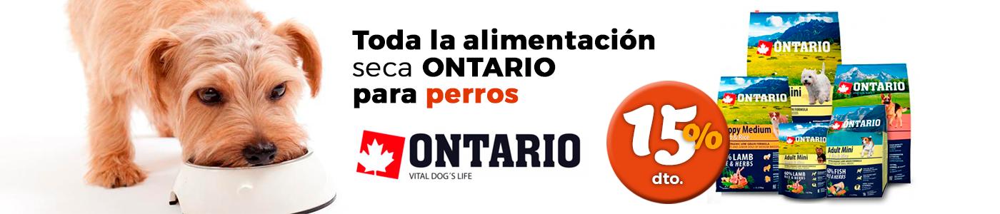 Promoción pienso Ontario
