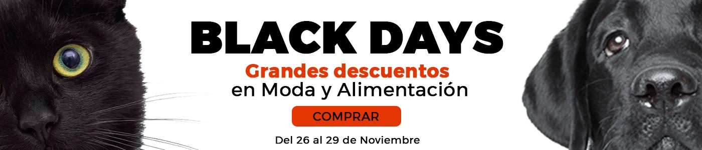 Promoción black days