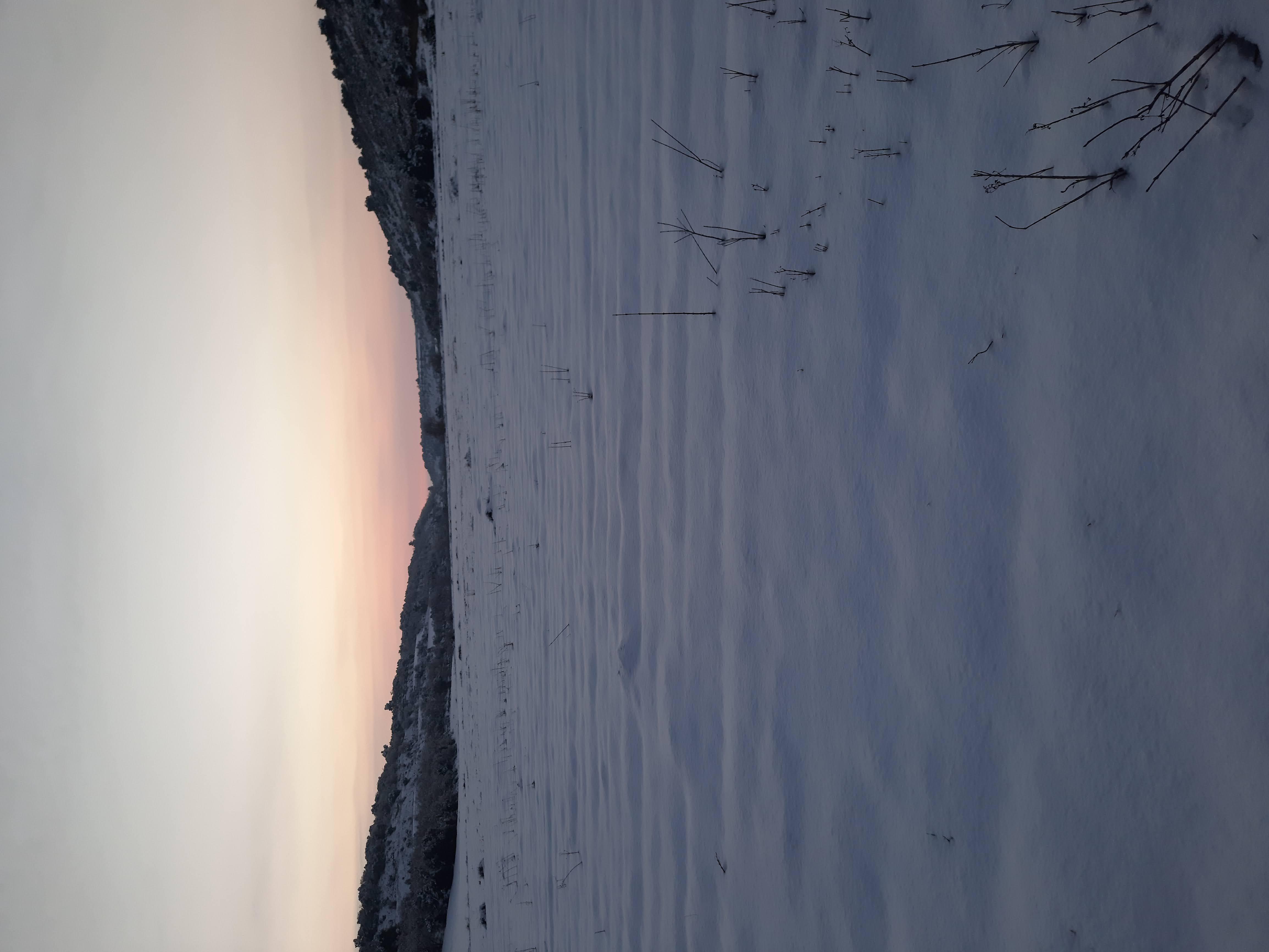 Fotos nevada gener 2021