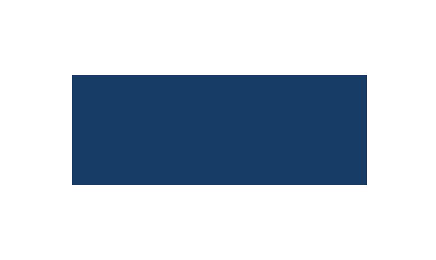 YDINS